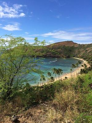 Oahu23